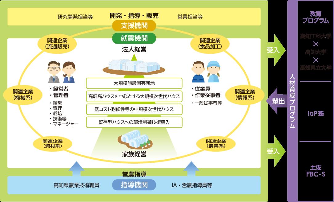 育成ターゲット4分類化の説明