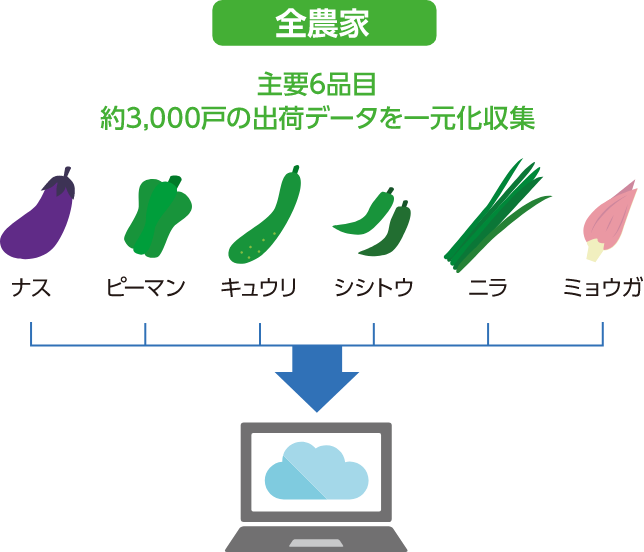 主要6品目約3,000戸の出荷データを一元化収集